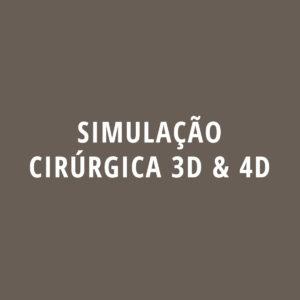 Ricardo Carvalho Simulação cirurgica 3d e 4d